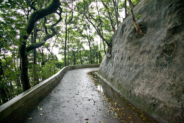 IMG_0942-hong-kong-trisa-taro.jpg