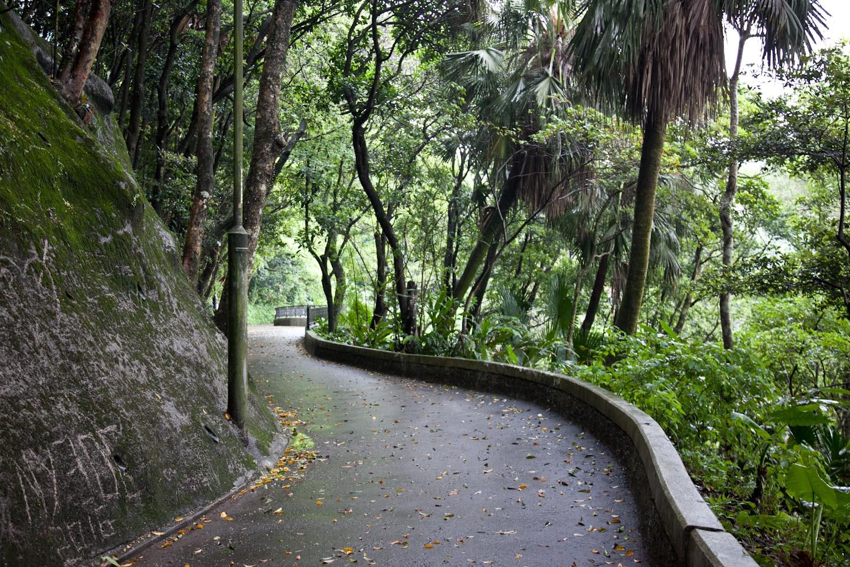 IMG_0955-hong-kong-trisa-taro.jpg