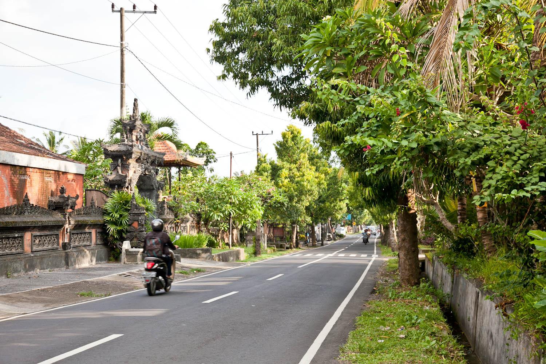 IMG_0380-ubud-bali-trisa-taro.jpg