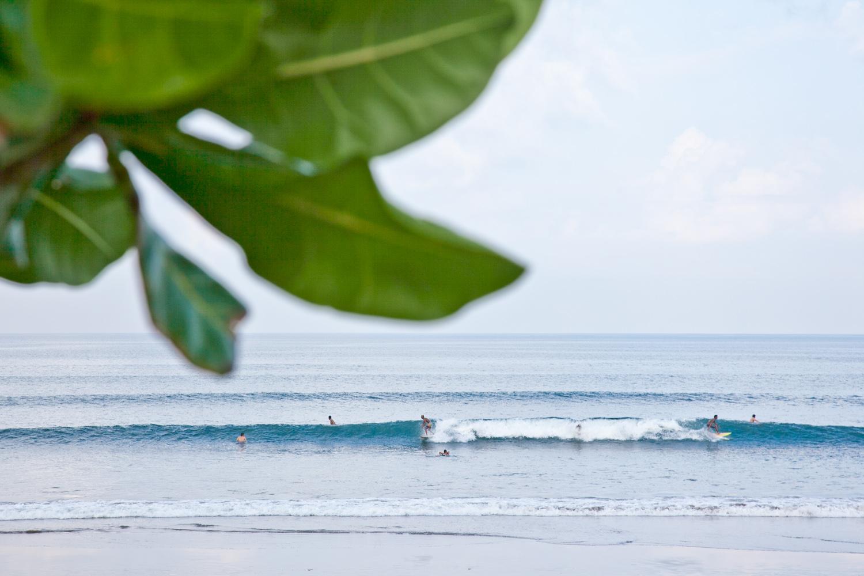 IMG_9665-seminyak-bali-indonesia-trisa-taro.jpg
