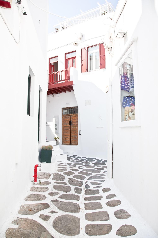 IMG_3825-mykonos-greece-cruise-day-trip-travel-trisa-taro.jpg