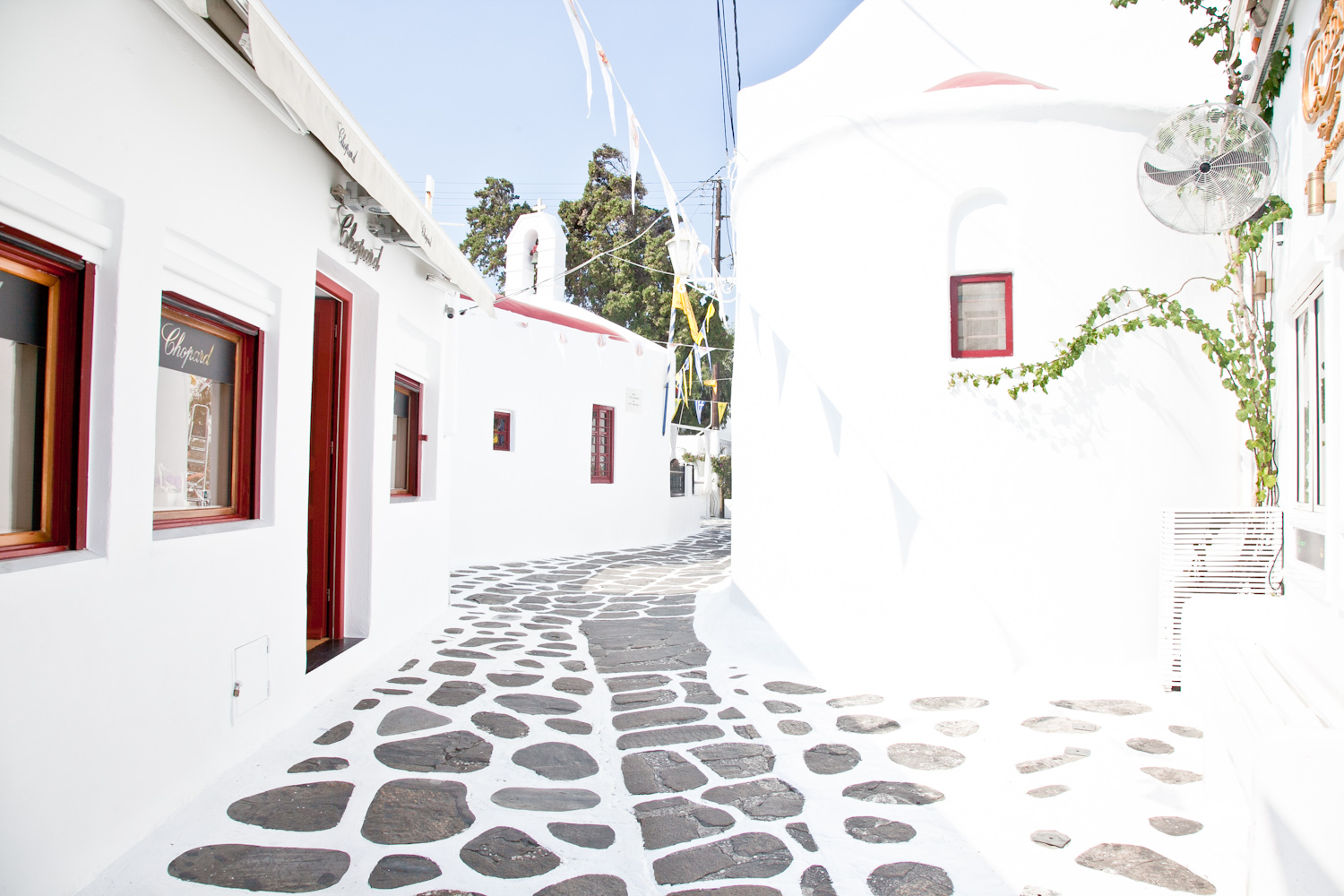 IMG_3847-mykonos-greece-cruise-day-trip-travel-trisa-taro.jpg