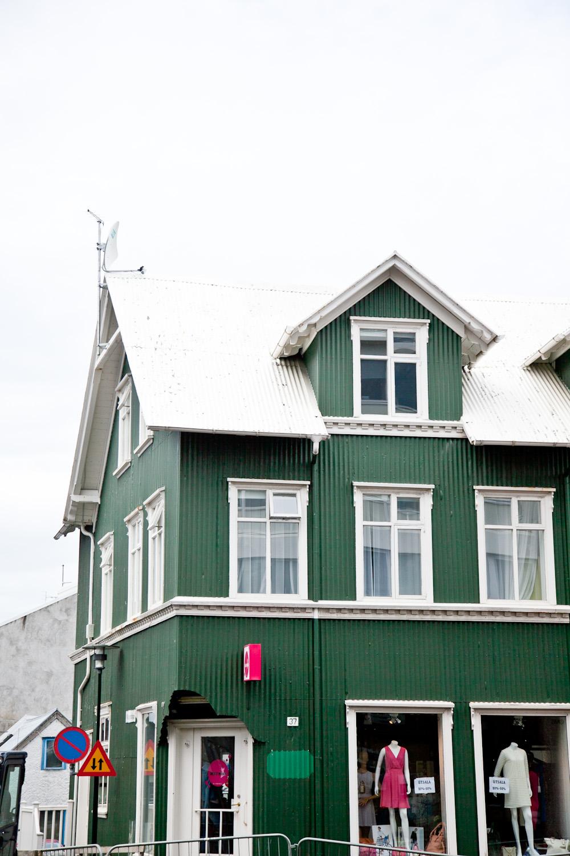 IMG_2120-iceland-trisa-taro.jpg