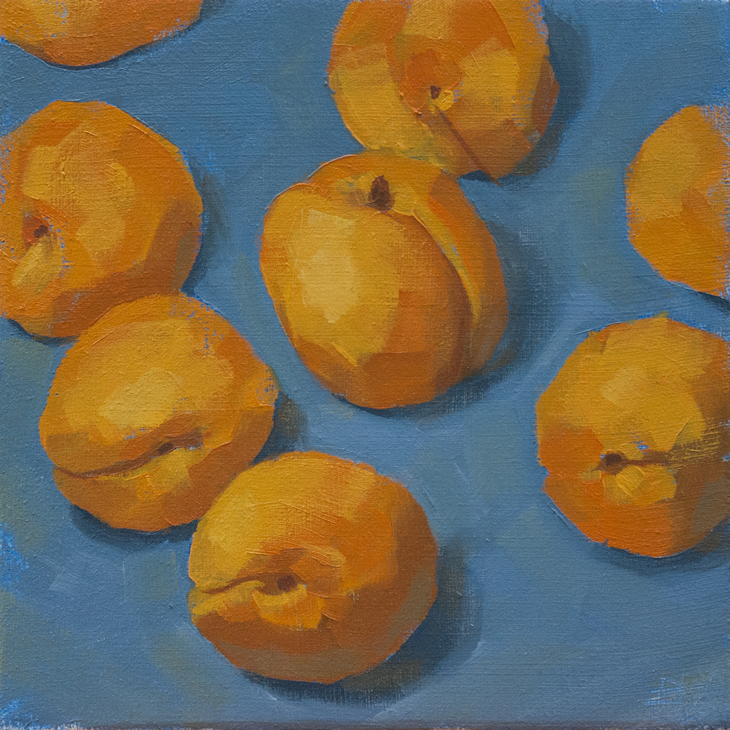 Incubating Apricots by Rob Lunn