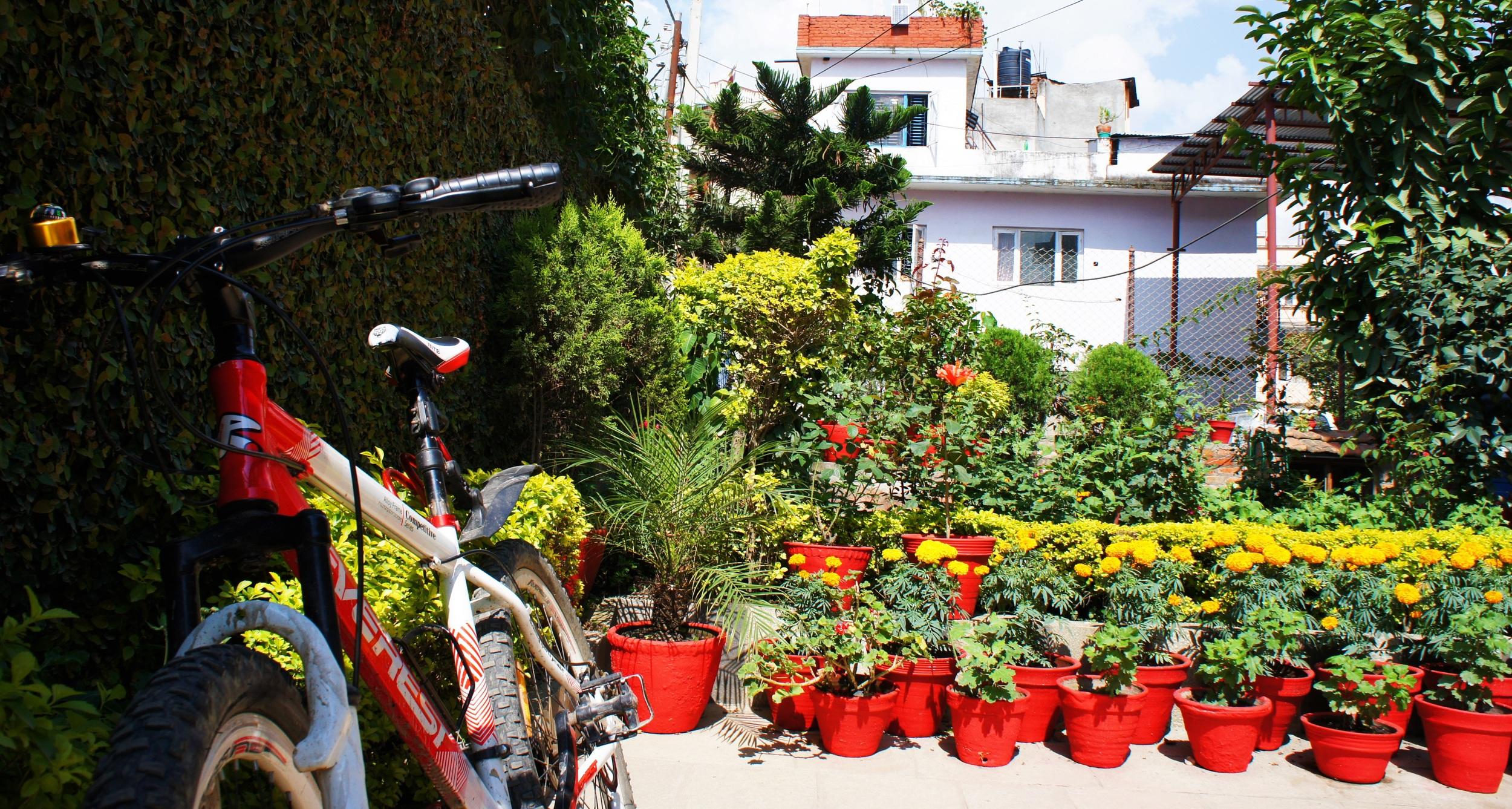 2 - Garden.JPG