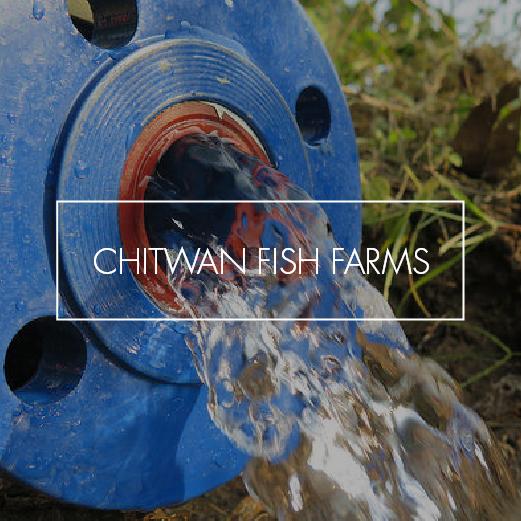 Chitwan Fish Farm