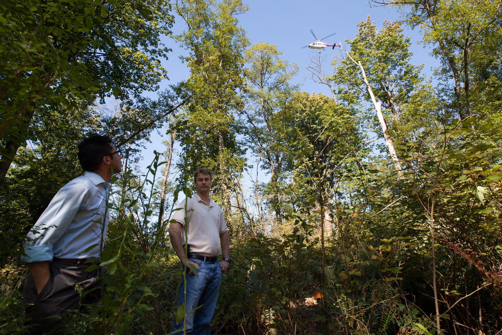 Kinder Morgan employees stand in the area where their company illegaly cut 13 Red Aldersin the Burnaby Mountain Conservation Area. The Kinder Morgan helicopter flies above.  Kinder Morgan removed these trees so that they could drill a borehole to survey the mountain for the proposed Trans Mountain Pipeline Expansion Project.