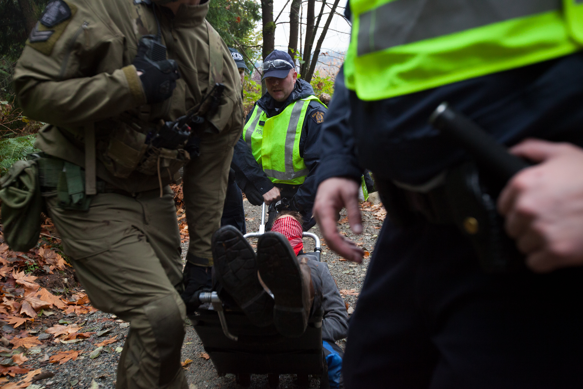 The next morning, police removed the protestor from the tree and brought him to jail.