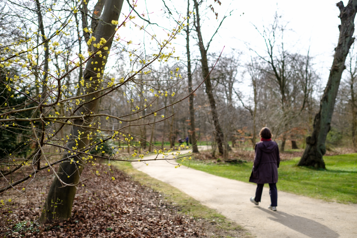 A woman walks along the trails in Frederiksberg Gardens in Copenhagen Denmark