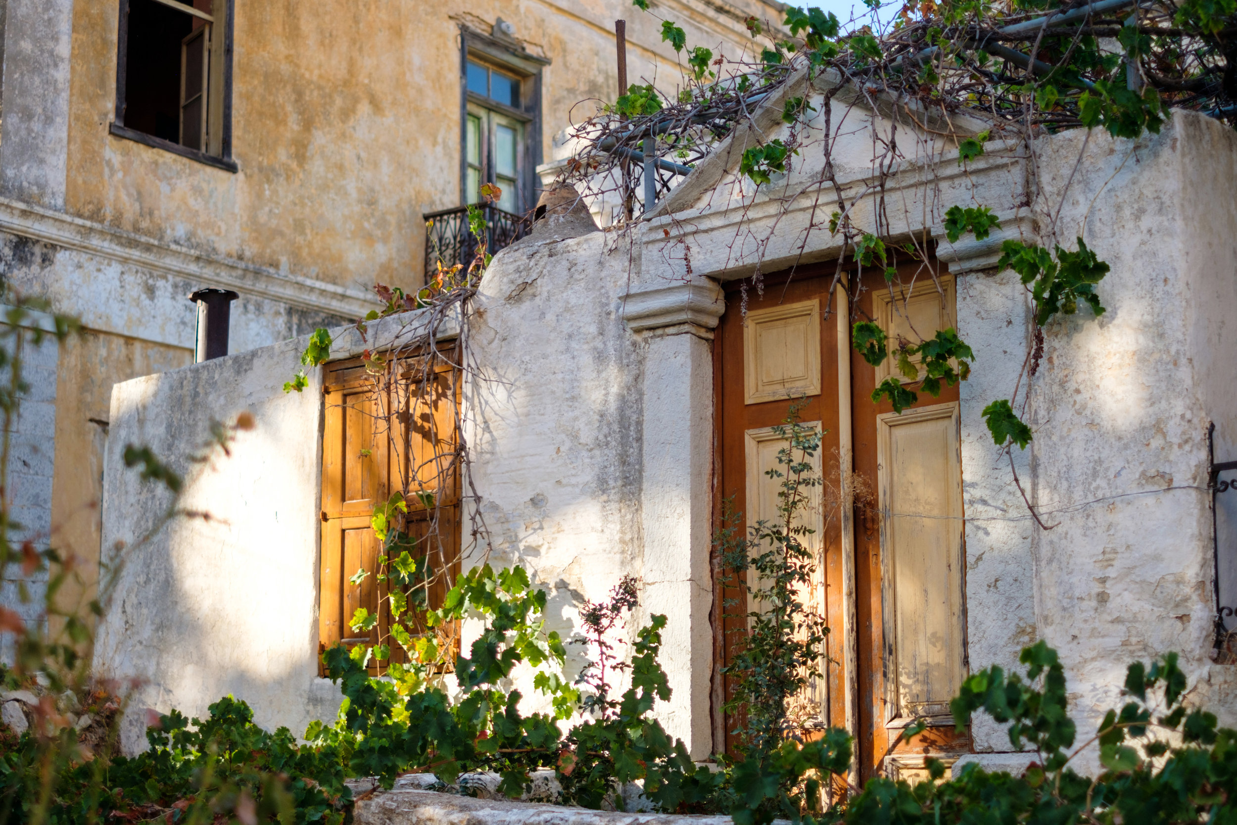 A front door with flowers entering a home in Symi Greece