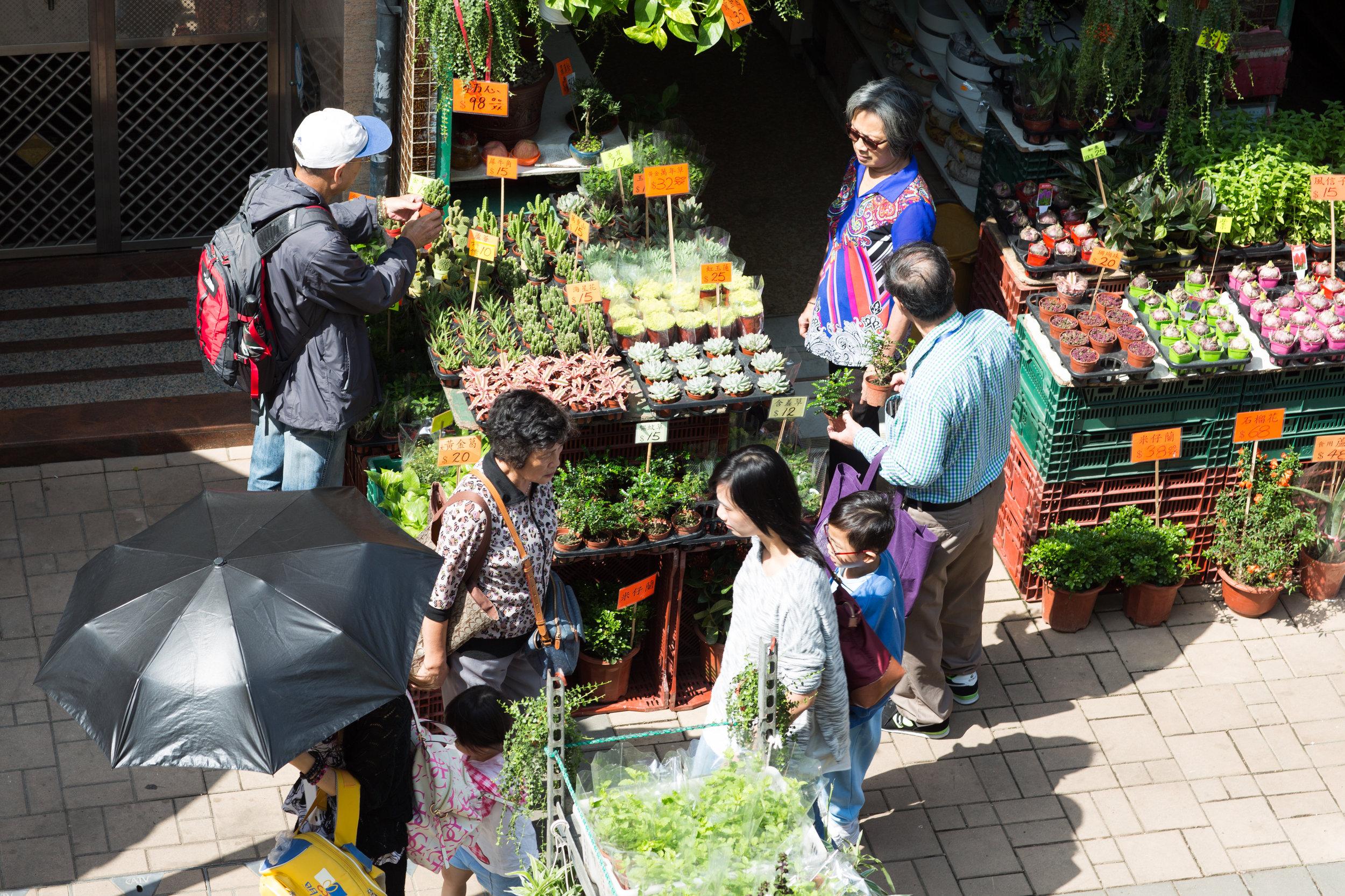People visiting the flower market in Mongkok Hong Kong