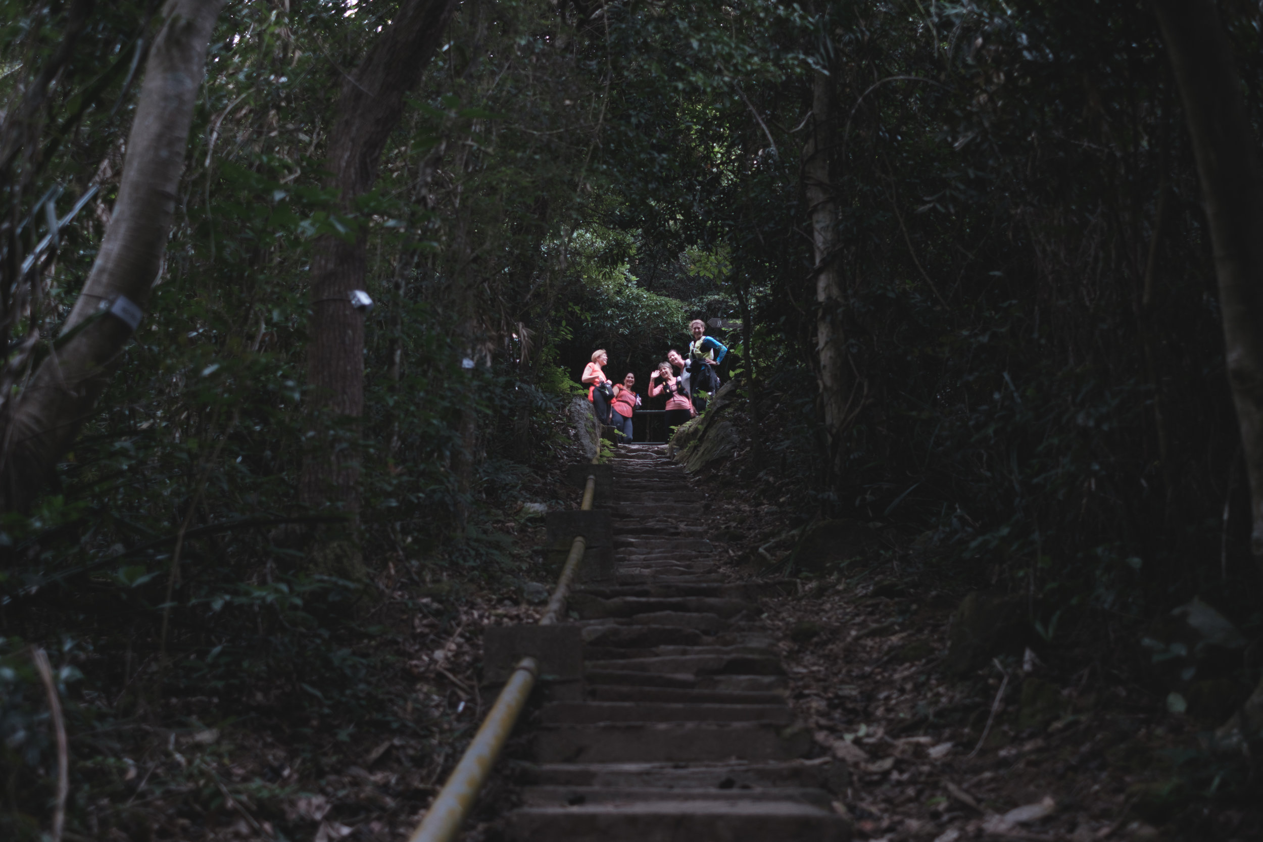 A womens group of hikers captured a the top of a set of stairs at the Dragon's Back Trail in Hong Kong