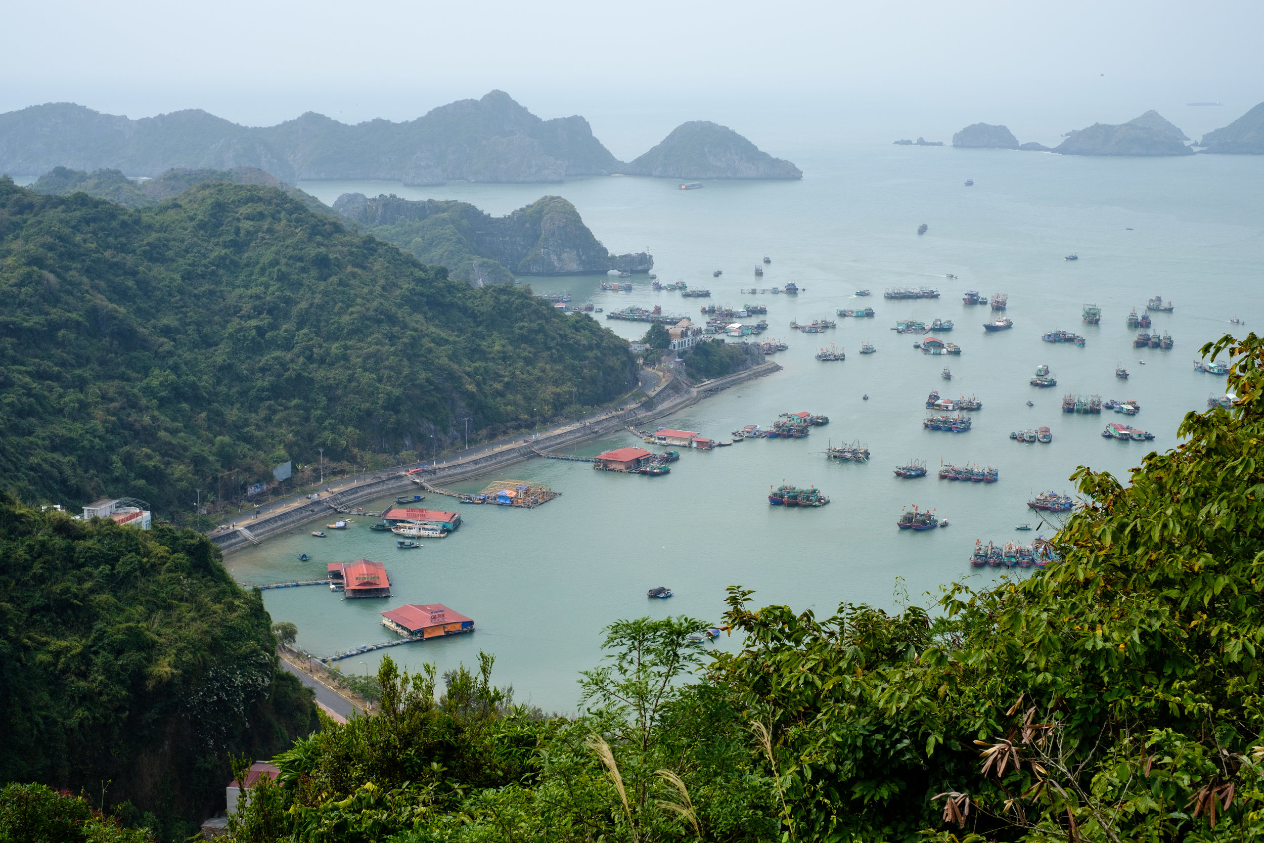 The bay of Cat Ba Town