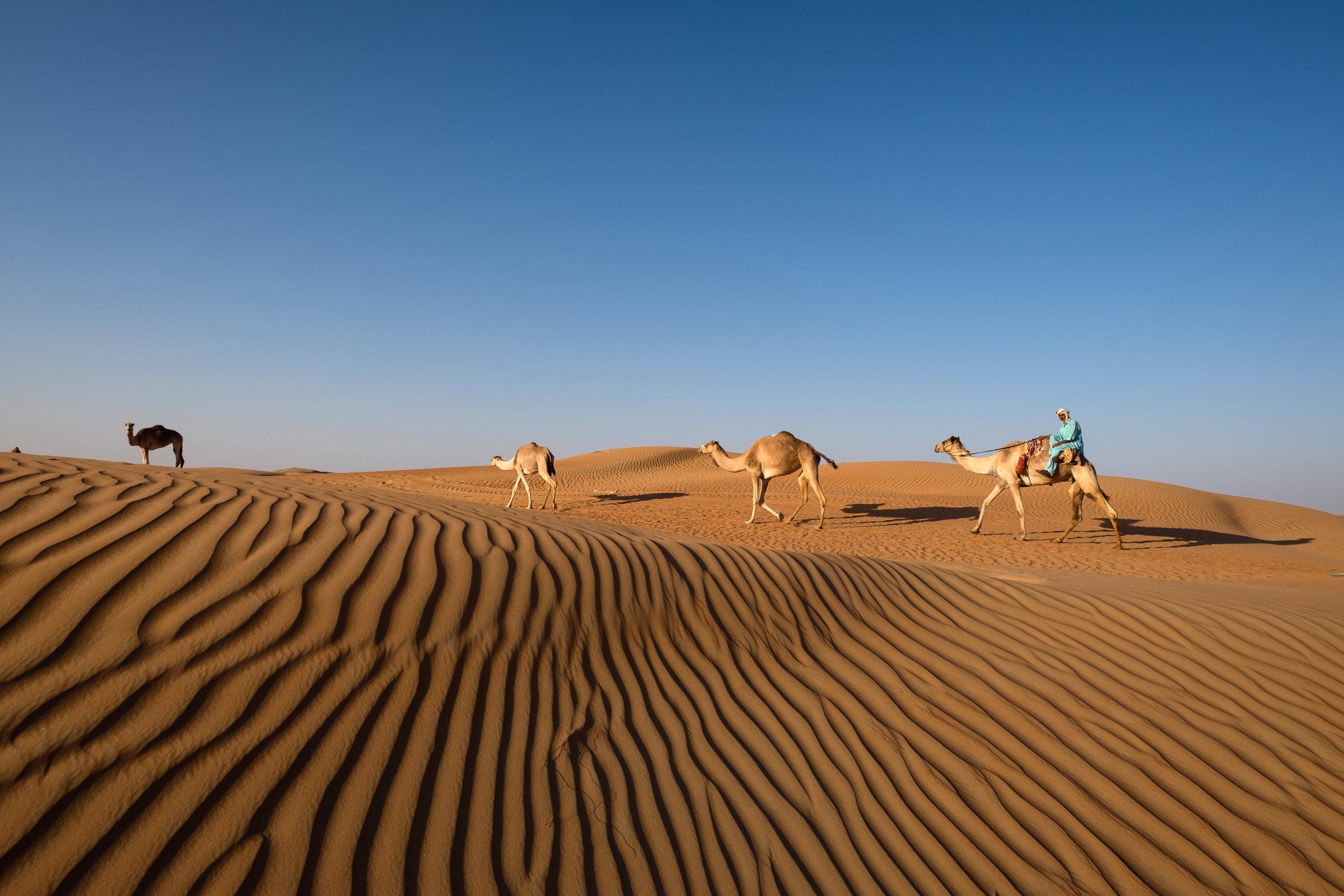 Al Ain,  UAE , Fujifilm X-T1, XF 14mm f/2.8 R @ f/8