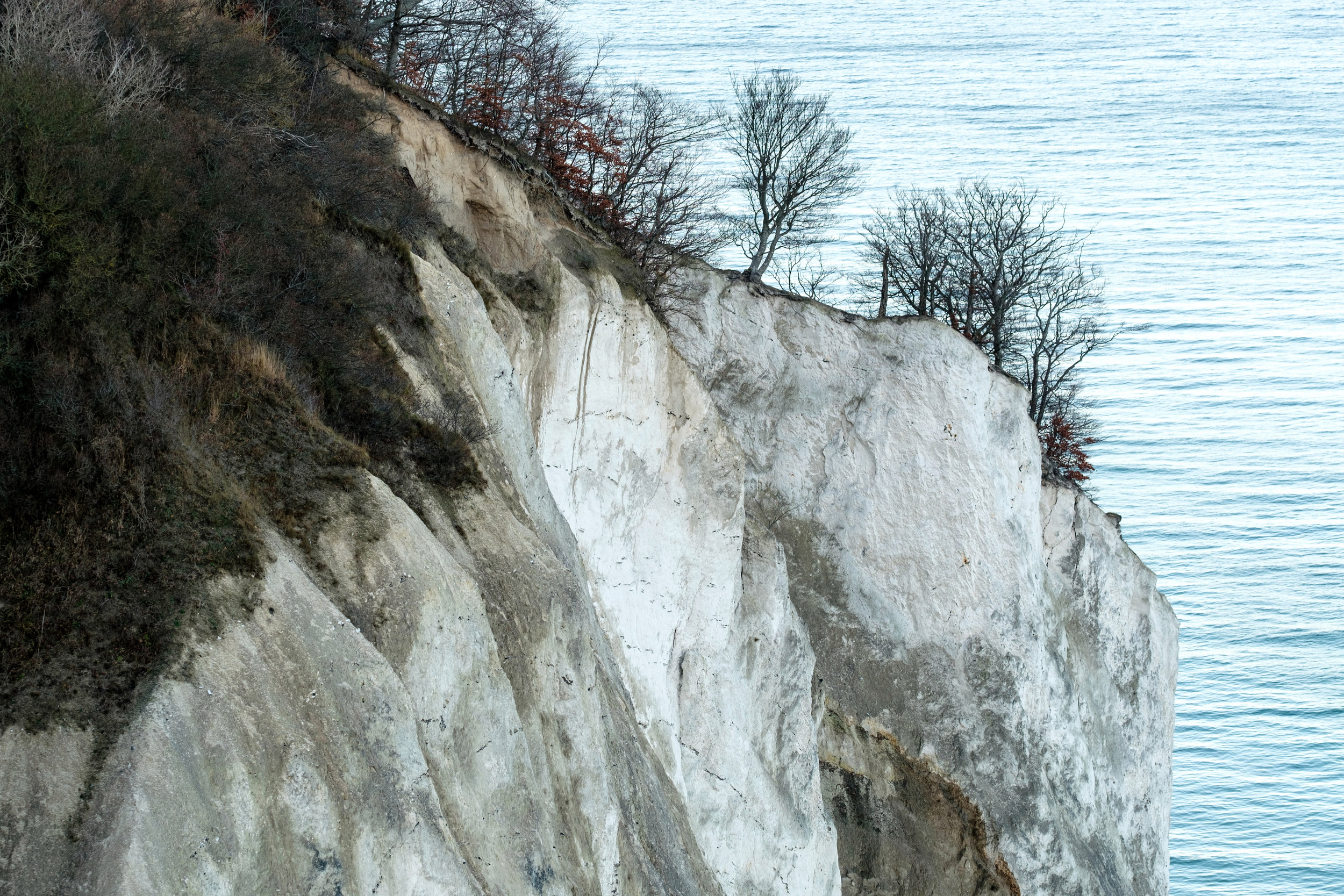The steep Cliffs of Moen, Møns Klint in Denmark on the Baltic Sea