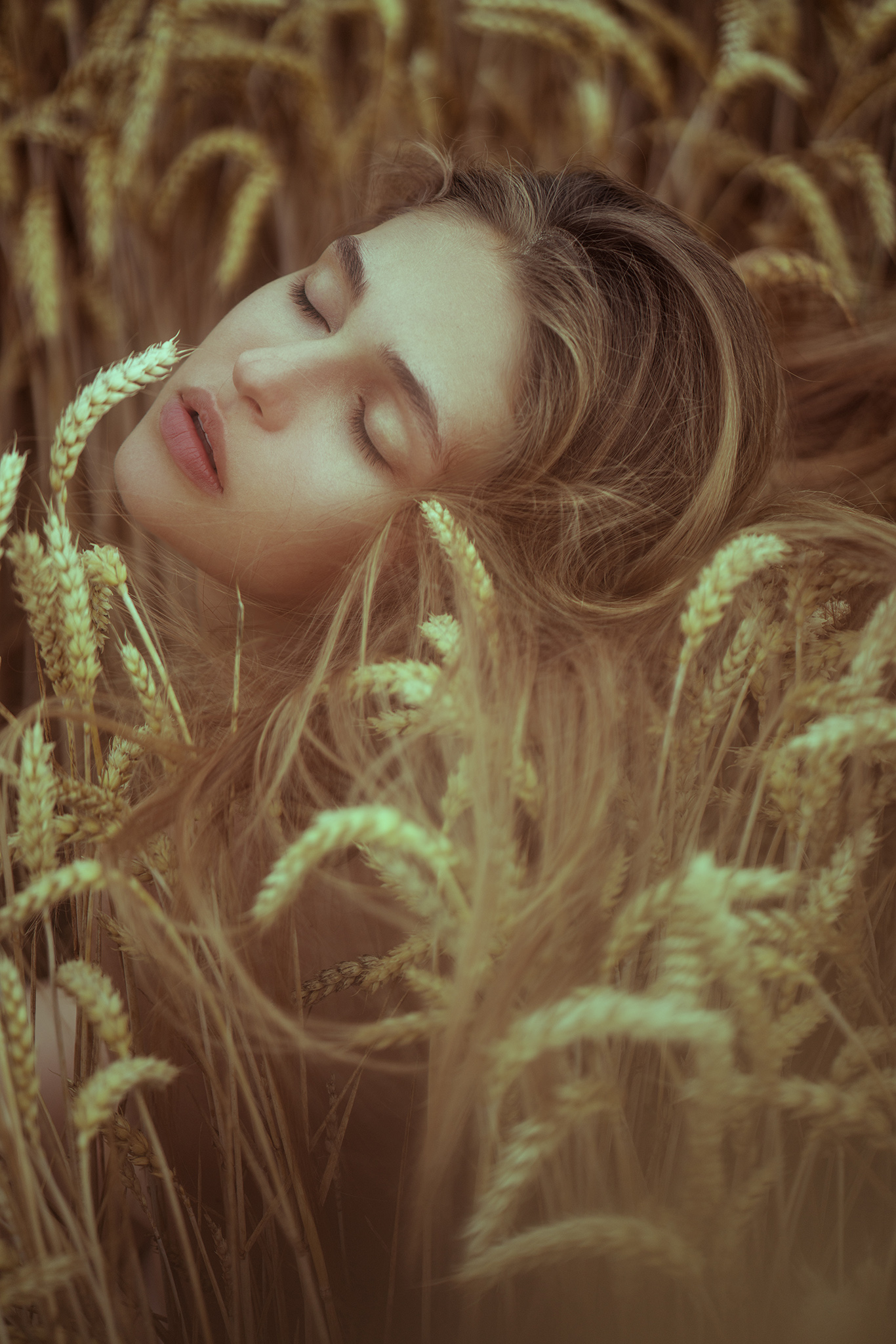 Aleksandra Wheat2 FB.jpg