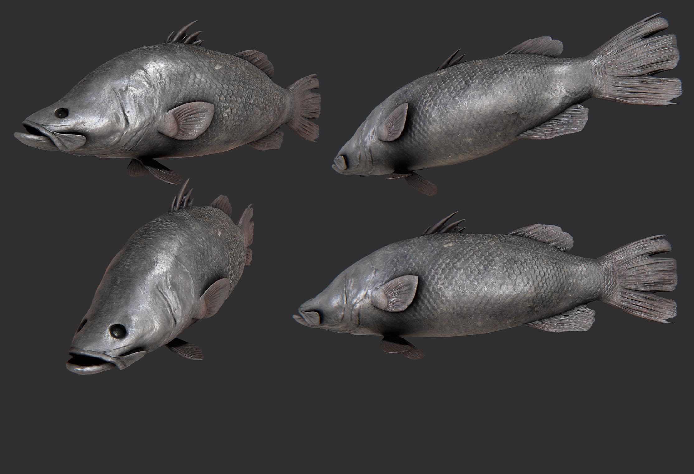 Fish Modeling WIP.jpg