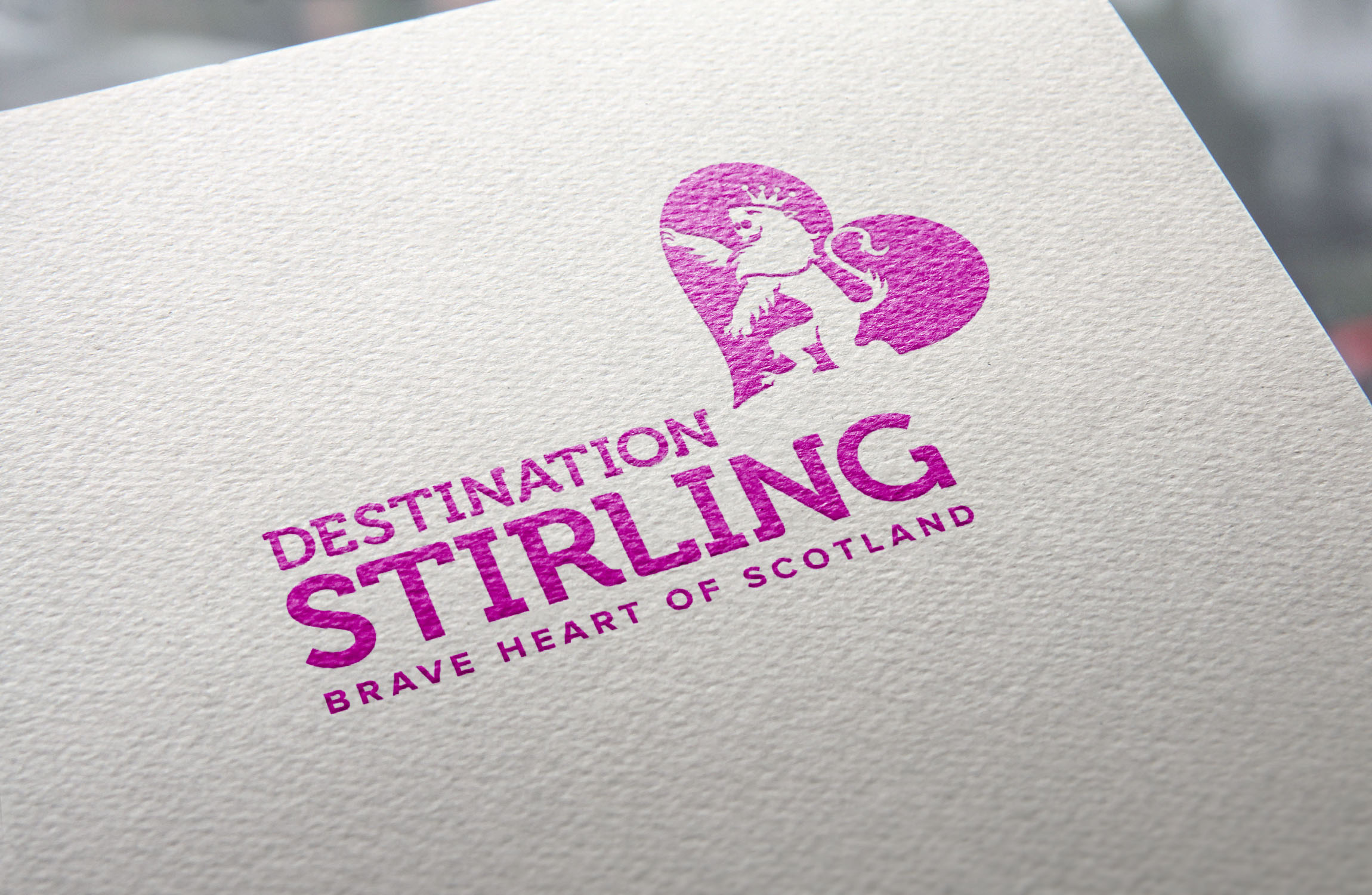 DS_Logo_MockUp.jpg