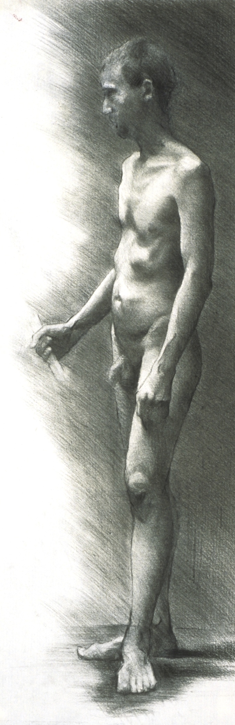Male Nude, side frontal
