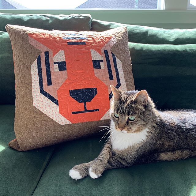 "My house tiger has decided she can be friends with Antonia Tiger. 20"" pillow cover made using my new Antonia Tiger pattern, which will be available in early November. #antoniatigerquilt"