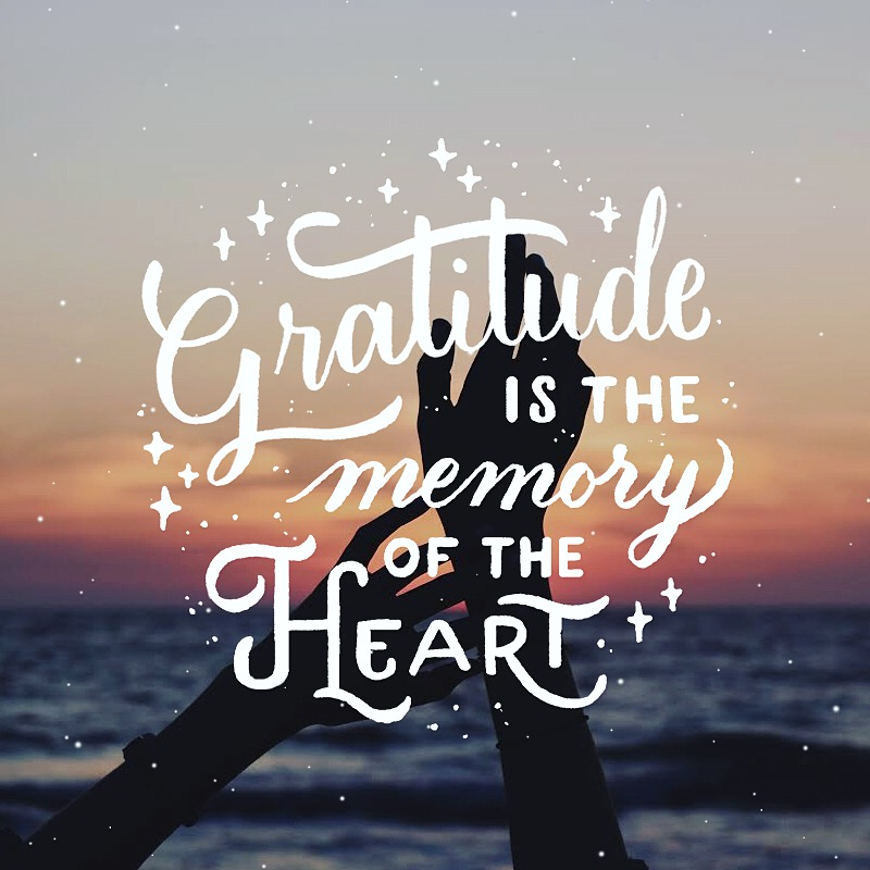 GRATITUDE IS THE MEMORY OF THE HEART. BY: LEO GOMEZ