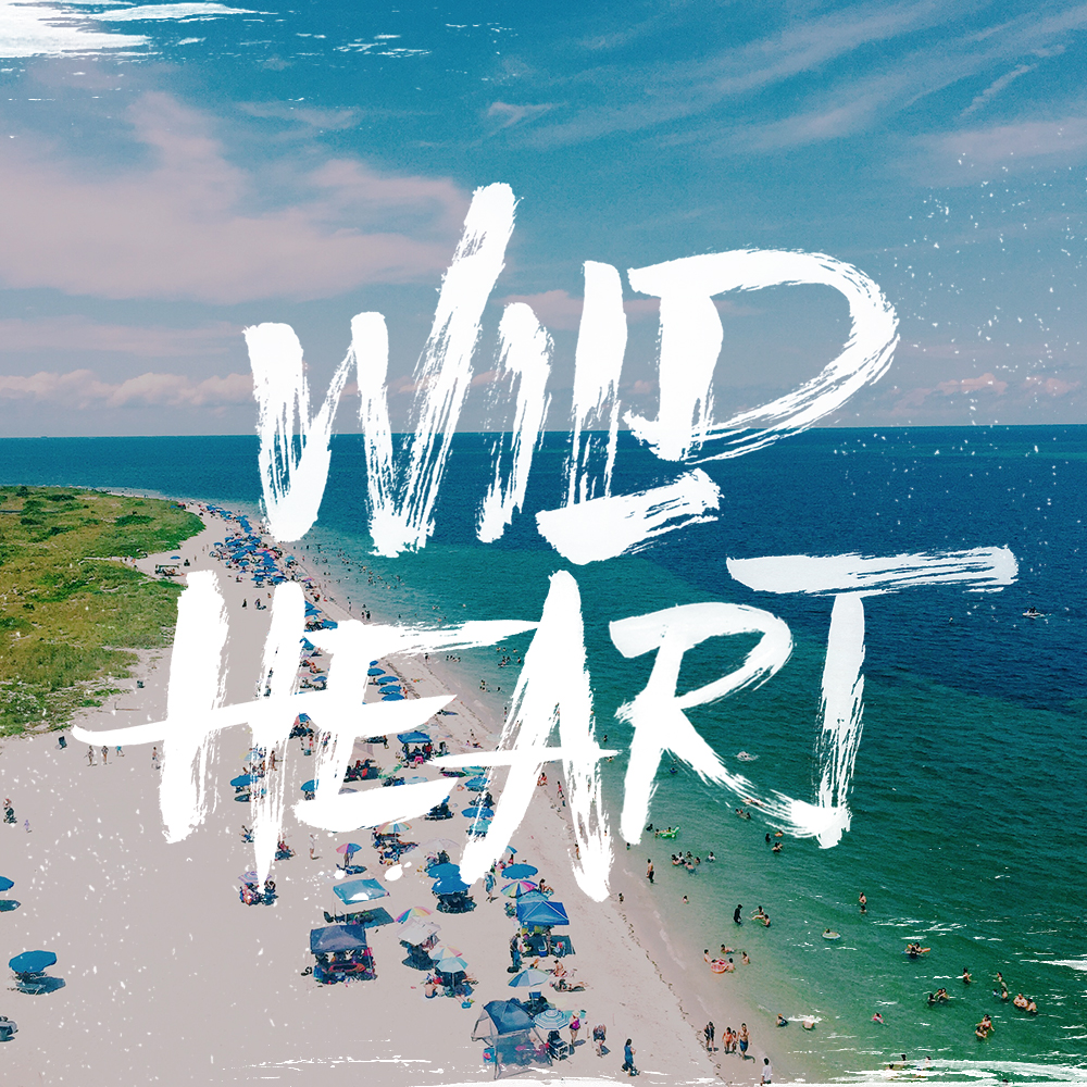 Wild-heart-lettering-leo-gomez-studio