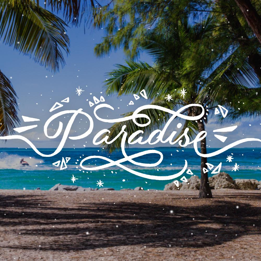 Paradise-lettering-leo-gomez-studio