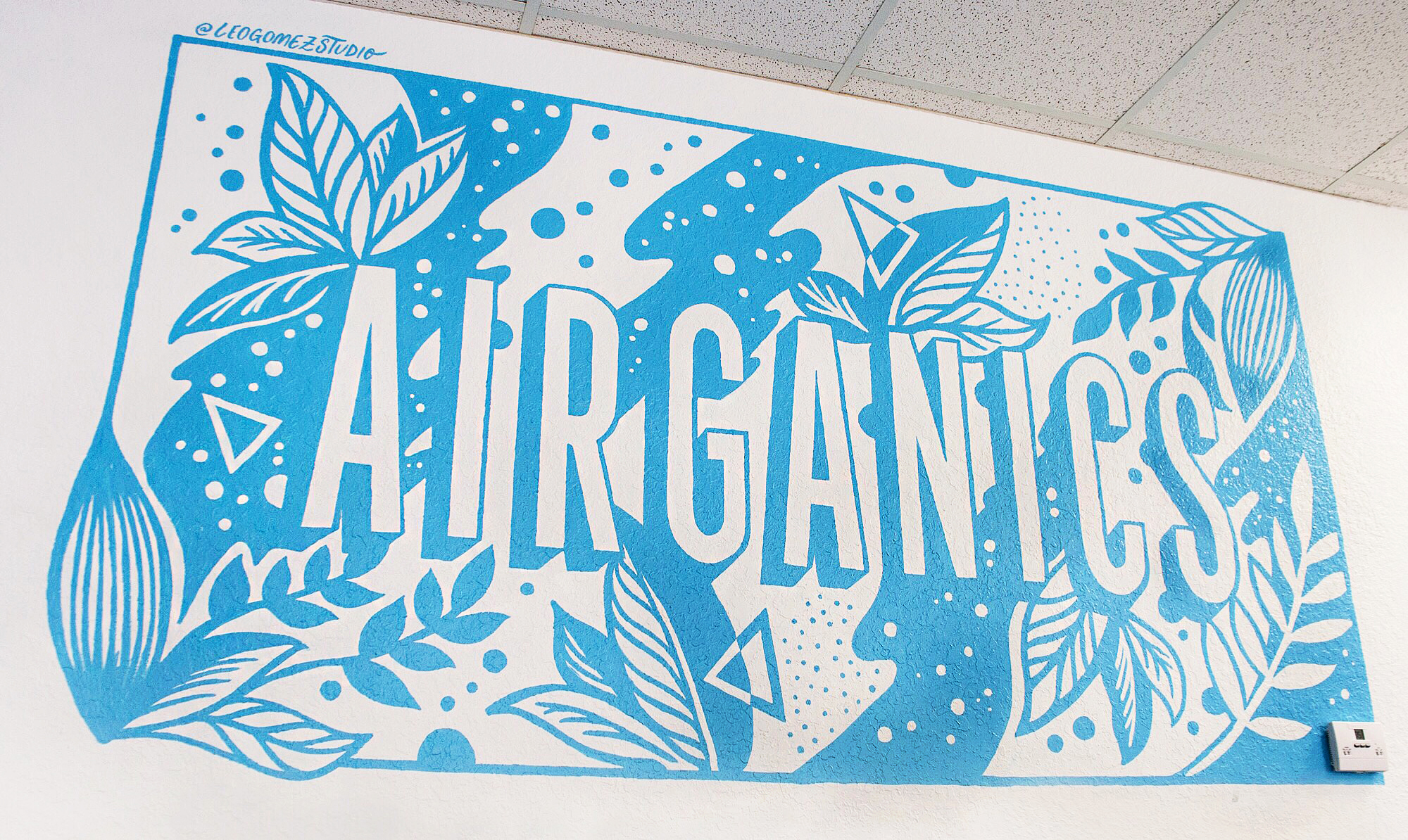 Leo-Gomez-Studio-Airganics-Office-Mural.jpg