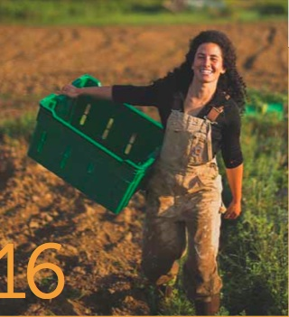 BFS' Executive Director featured in this Fall's issue of Bowdoin Magazine. Scroll down to page 16!