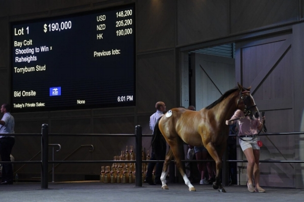 LOT 1 RIVERSIDE Shooting To Win colt makes history when selling to YuLong Investments
