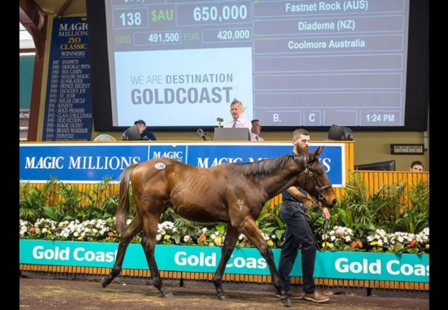 BOOMER BUYS COLT BY FASTNET ROCK