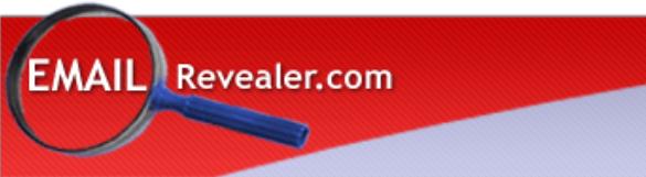 Email Reveler Banner.PNG