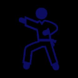 masterclass ninja.png