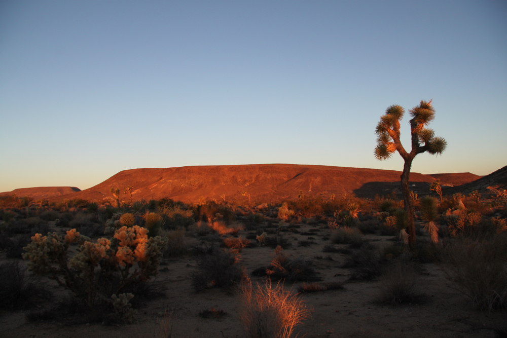 sunrise over flat top mesa