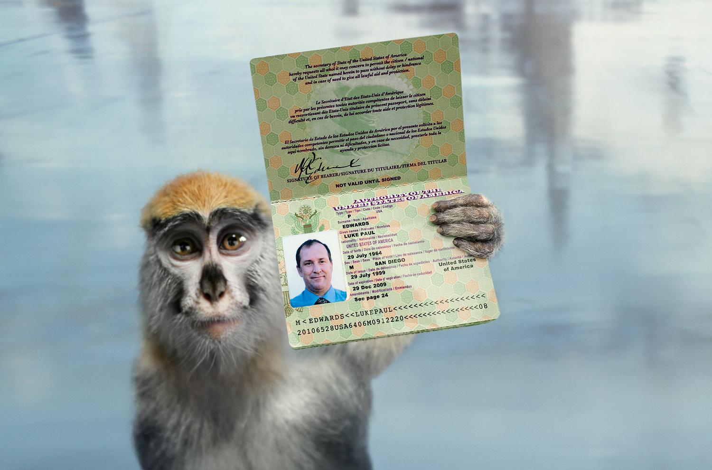 Passport3-RGB-Final_WEB_ZP.jpg