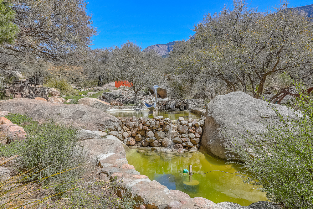 spring creek -29.jpg
