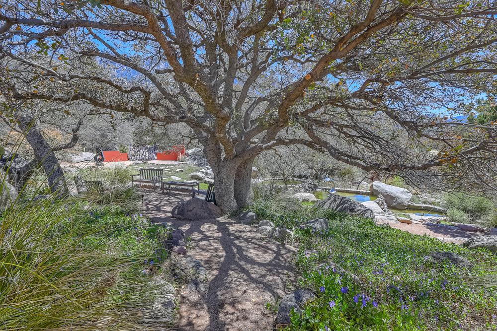 spring creek -34.jpg