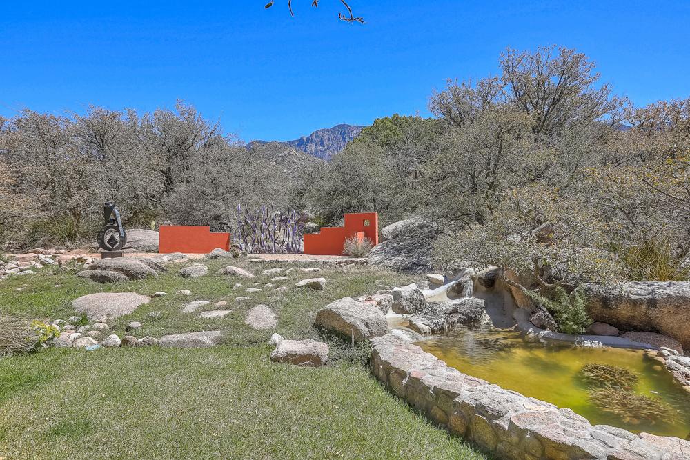 spring creek -45.jpg