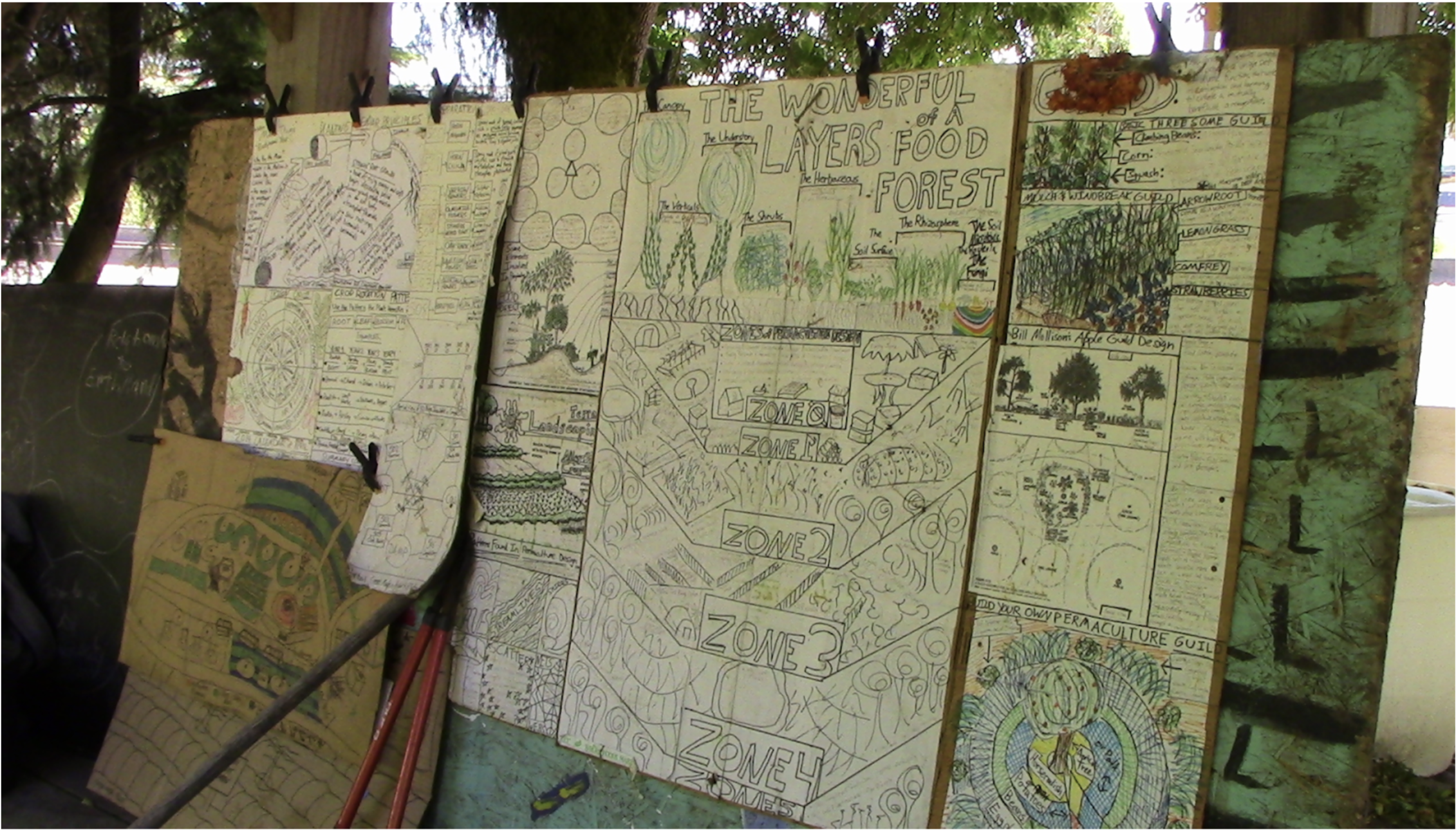 Food forest diagrams at Greeley Food Forest