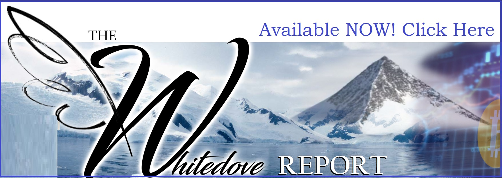 the whitedove crypto report get it here.