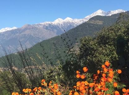 dharmalaya-retreat-4.jpg