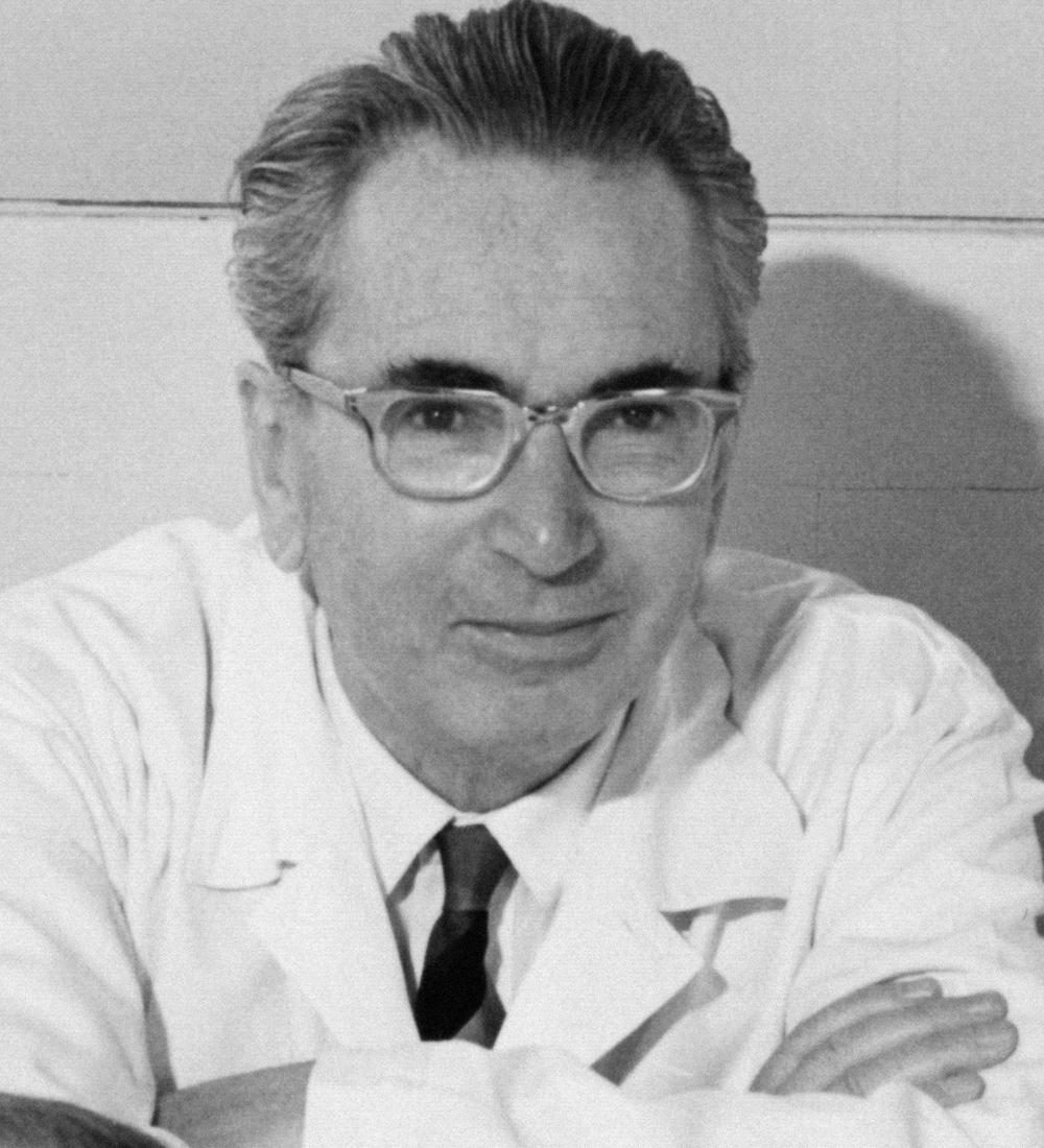 Image Source: Prof. Dr. Franz Vesely, Viktor-Frankl-Archiv, Wikimedia Commons