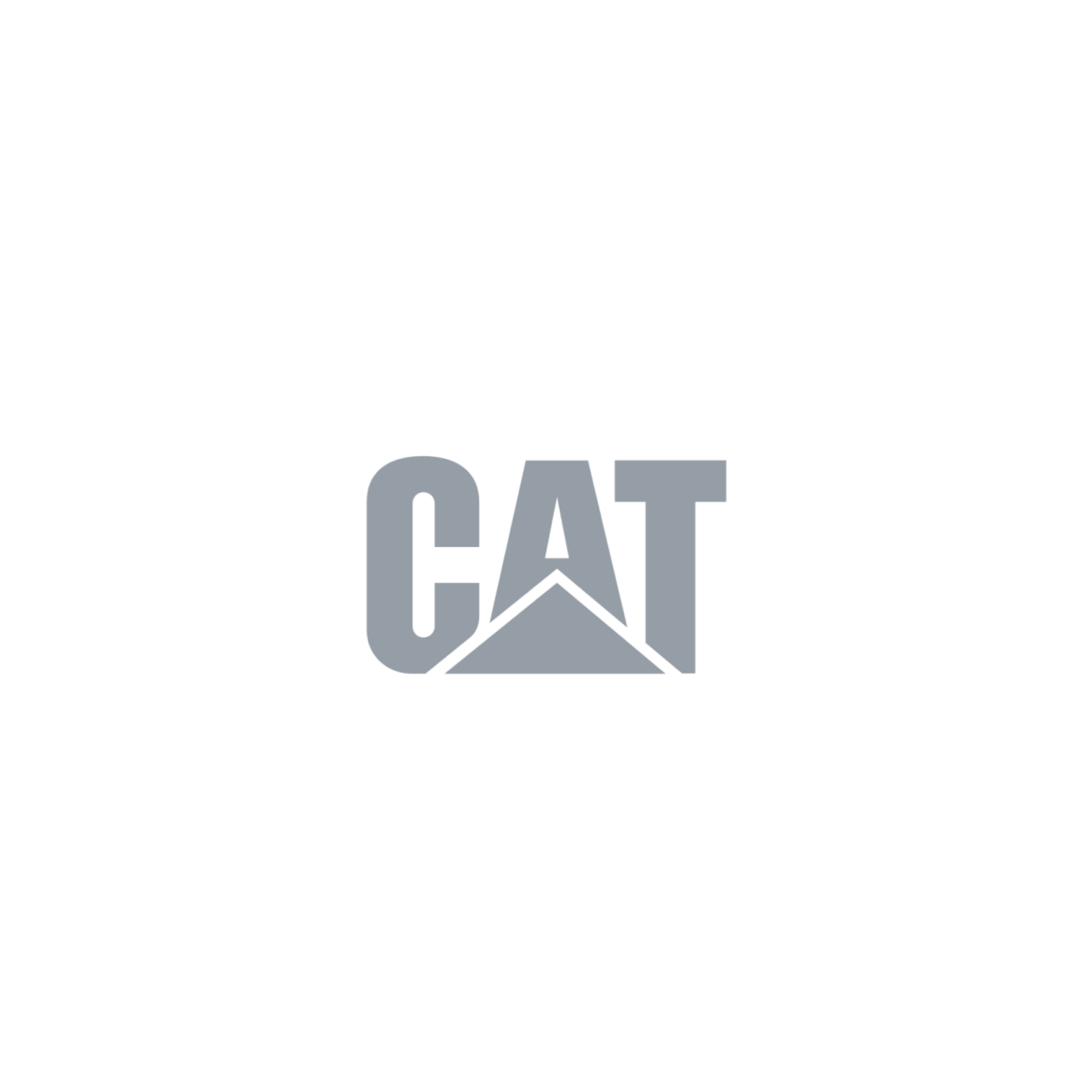 CAT Alejandro Mejias.png