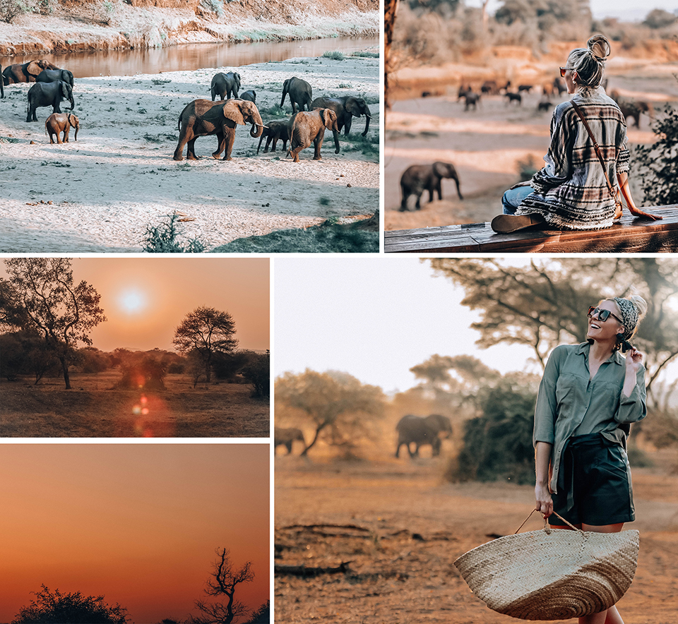 "Nothing quite like the red hues of an African sunset. Altogether now: ""I'm searching for the spirit of the great heart; under African skies..."""