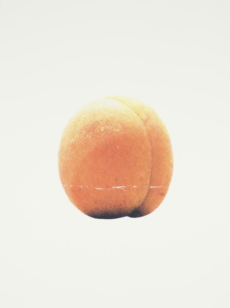 54_apricot1000.jpg