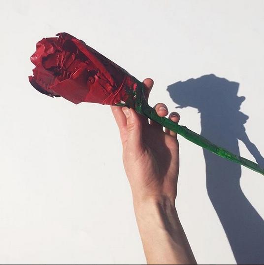 rose.jpeg