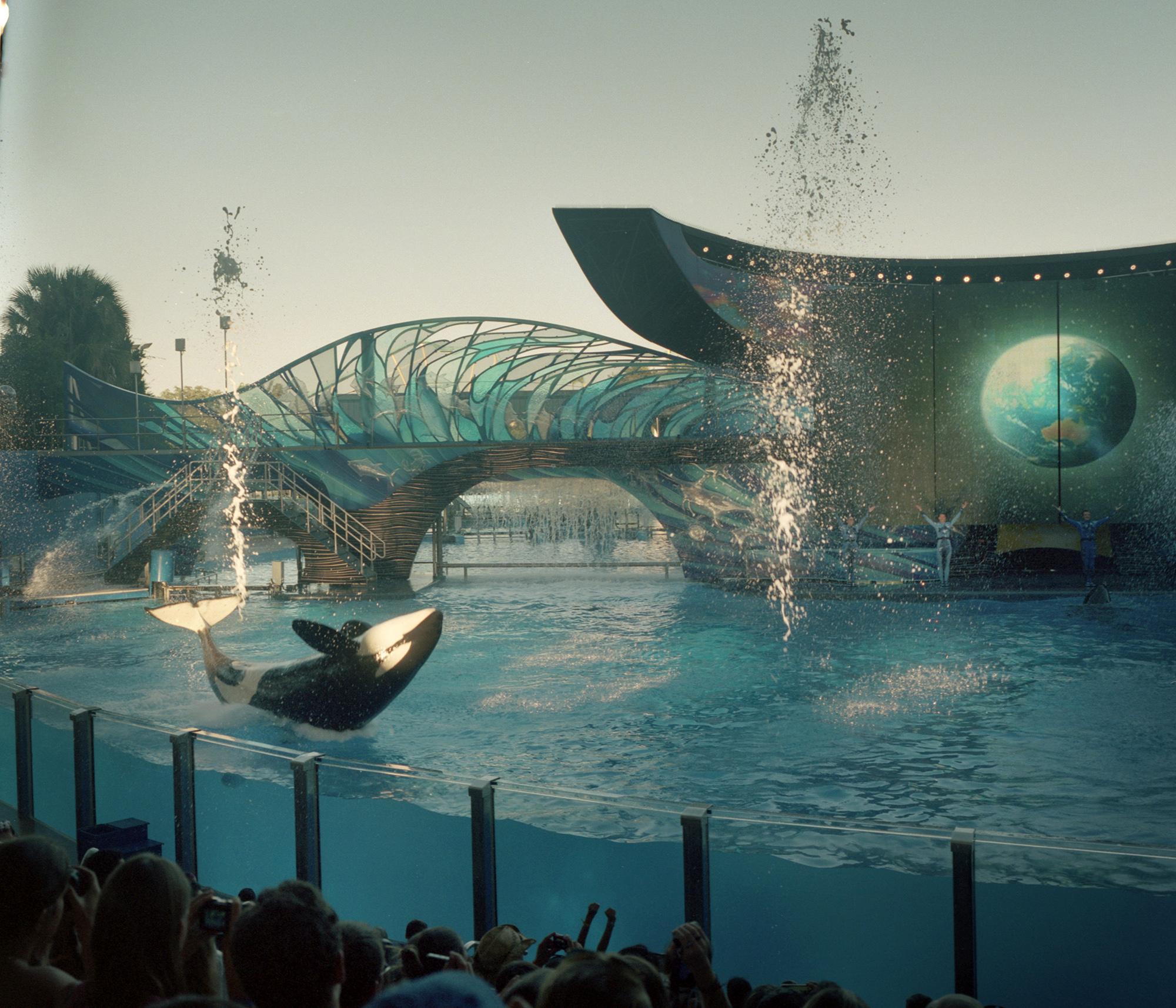 SeaWorld04.jpg