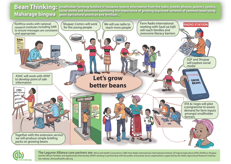 CABI-FINAL-Bean-Poster-Web-Image1.jpg