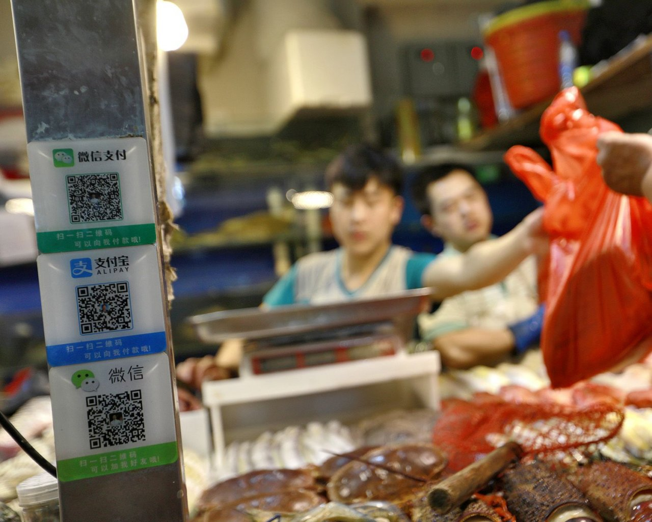 QR codes for mobile payments via Wechat and Alipay are seen on a seafood stall in a market in Beijing, China, 09 August 2017. Image Source: nationmultimedia.com