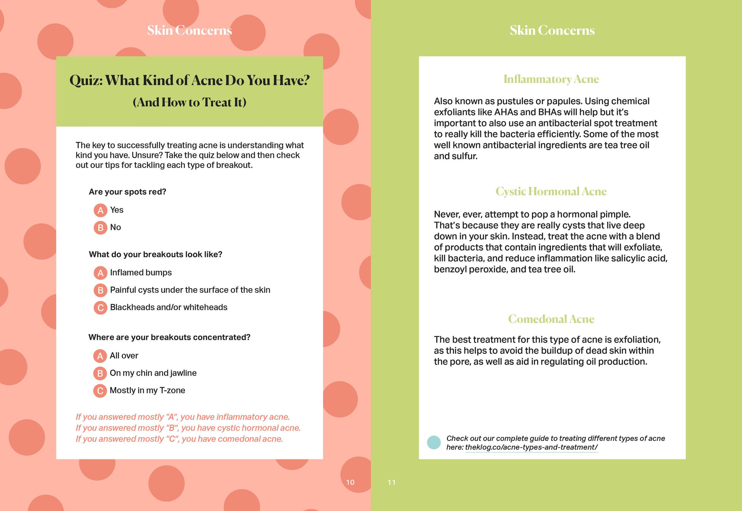 The-Klog-zine-layout-FINAL-pg10-11.jpg